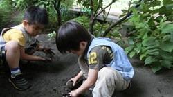 ★川越市 幼稚園CIMG0306