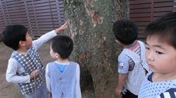 ★川越市 幼稚園CIMG0504