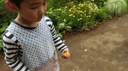 ★川越市 幼稚園CIMG0585