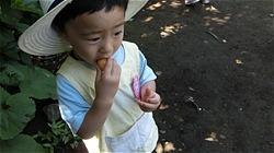 ★川越市 幼稚園CIMG1167