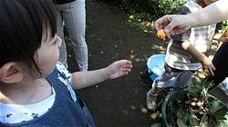 ★川越市 幼稚園CIMG1192