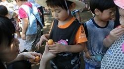 ★川越市 幼稚園CIMG1216