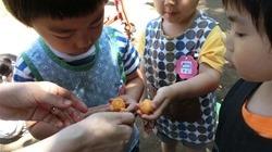 ★川越市 幼稚園CIMG1221