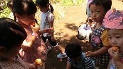 ★川越市 幼稚園CIMG1234