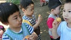 ★川越市 幼稚園CIMG1251 - コピー