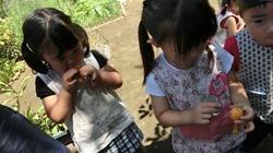 ★川越市 幼稚園CIMG1255