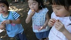 ★川越市 幼稚園CIMG1282