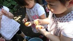 ★川越市 幼稚園CIMG1288