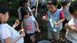 ★川越市 幼稚園CIMG1303