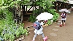 ★川越市 幼稚園CIMG1671