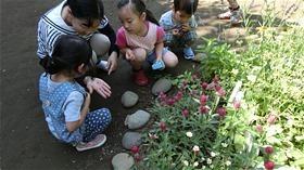 ★川越市 幼稚園CIMG3371