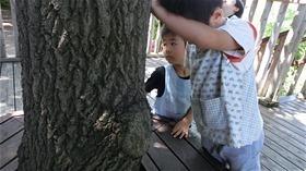 ★川越市 幼稚園CIMG3430