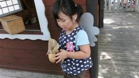 ★川越市 幼稚園CIMG3672