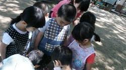 ★川越市 幼稚園CIMG9758