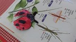 ★川越市 幼稚園CIMG9796
