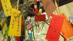 ★川越市 幼稚園DSCF4887