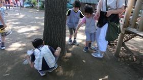 ★川越市 幼稚園CIMG5657