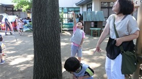 ★川越市 幼稚園CIMG5658