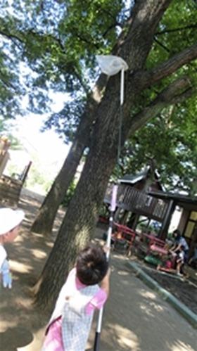 ★川越市 幼稚園CIMG5679