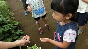 ★川越市 幼稚園CIMG6323
