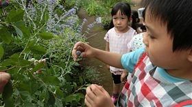 ★川越市 幼稚園CIMG6340