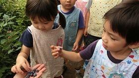 ★川越市 幼稚園CIMG6351