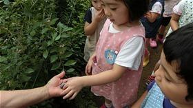 ★川越市 幼稚園CIMG6355