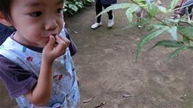 ★川越市 幼稚園CIMG6357