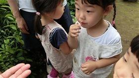★川越市 幼稚園CIMG6364