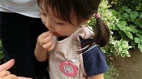 ★川越市 幼稚園CIMG6366
