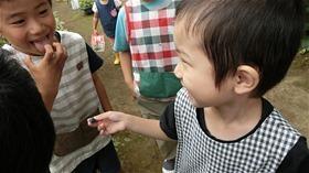 ★川越市 幼稚園CIMG6374