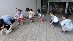 ★川越市 幼稚園CIMG6505