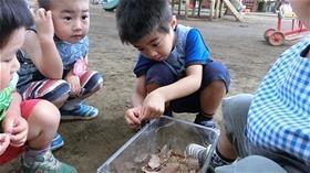 ★川越市 幼稚園CIMG6840