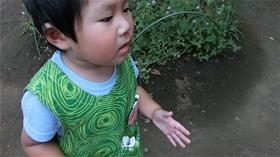 ★川越市 幼稚園CIMG6925