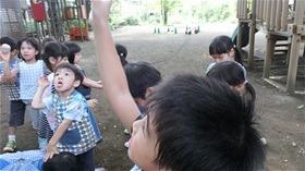 ★川越市 幼稚園CIMG1062