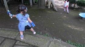 ★川越市 幼稚園CIMG1199