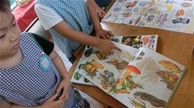 ★川越市 幼稚園CIMG1209