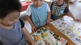 ★川越市 幼稚園CIMG1211