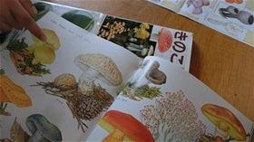 ★川越市 幼稚園CIMG1212