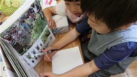 ★川越市 幼稚園CIMG1332