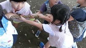 ★川越市 幼稚園CIMG1916