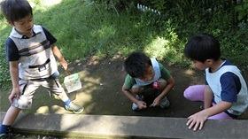 ★川越市 幼稚園CIMG7460