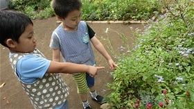 ★川越市 幼稚園CIMG8336