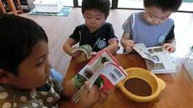 ★川越市 幼稚園CIMG8378