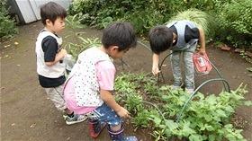 ★川越市 幼稚園CIMG9193