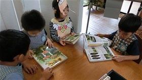 ★川越市 幼稚園CIMG9792