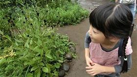 ★川越市 幼稚園CIMG9871
