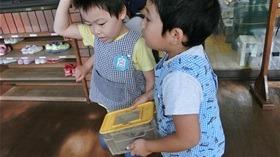 ★川越市 幼稚園CIMG2722