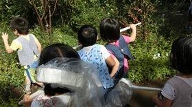 ★川越市 幼稚園CIMG2755