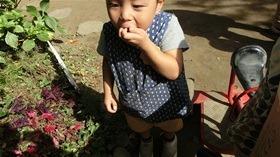 ★川越市 幼稚園CIMG3104